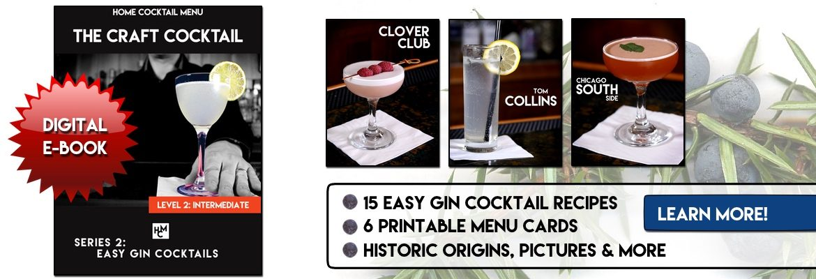 Easy Gin Cocktails